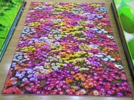 永州尼龙3D印花地毯