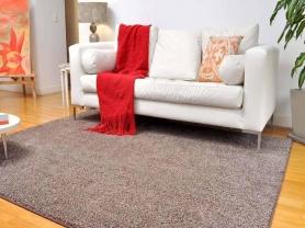 家用地毯清洗清洁小技巧